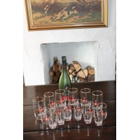 18 Piece Hunting Scene Glassware Set